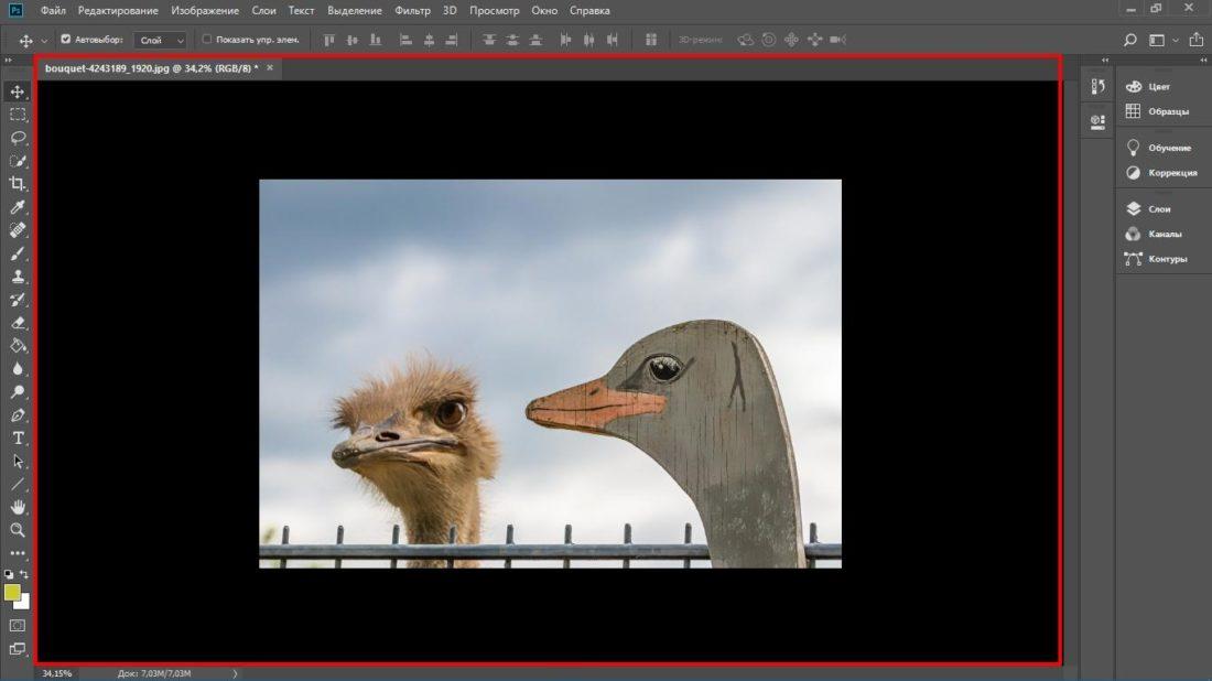 Рабочая область программы Photoshop