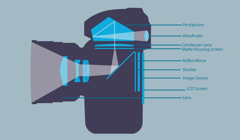 Основные компоненты зеркальной фотокамеры.