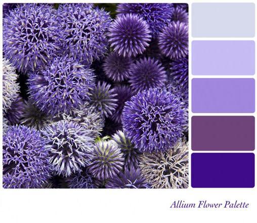 Монохроматические цвета - это просто разнообразие одного цвета.