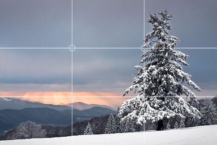 Изображении зимней елки на склоне горы