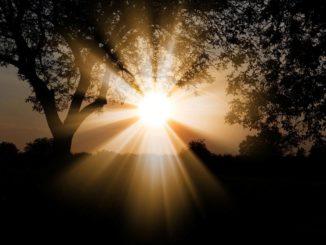 Натуральный свет в фотографии