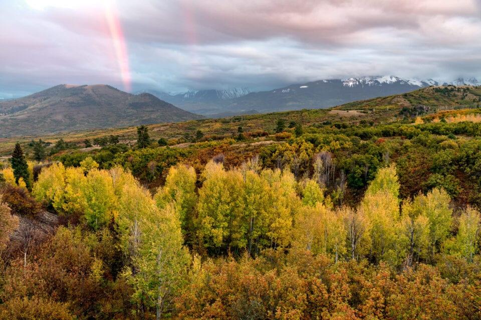 Как фотографировать осень